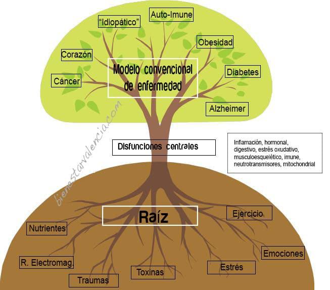 nutricion-raiz-enfermedades