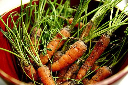 verdura-ecologica-flickr