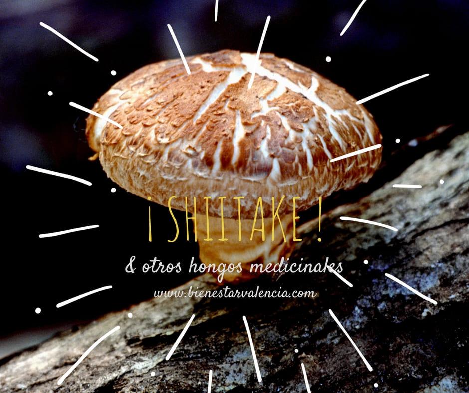 Setas Shiitake – y otros hongos saludables