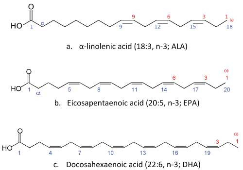 estructura-molecular-epa-dha-ala